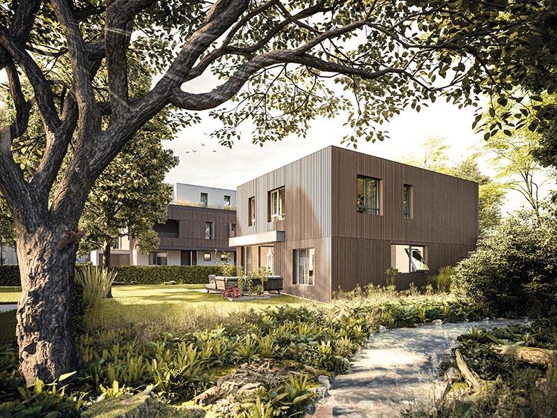 Fließender Übergang. Die Einfamilienhäuser orientieren sich farblich an den Baumrinden des angrenzenden Waldes. Richtung See hellt sich das Farbkonzept auf. Bildquelle: Bauwerk